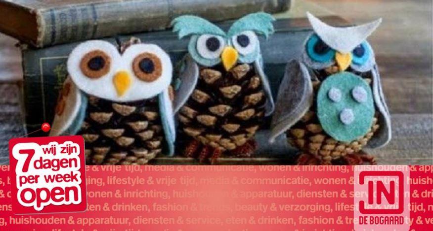 Genoeg Knutselen met dennenappels in De Bogaard - Rijswijk.TV #SN42