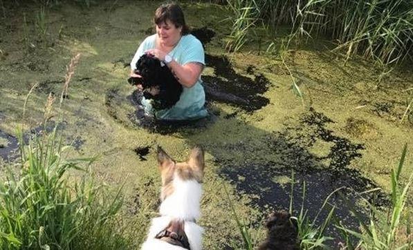 Vrouw redt puppy uit sloot