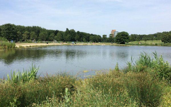 Lekker zwemmen in zwemplas Wilhelminapark