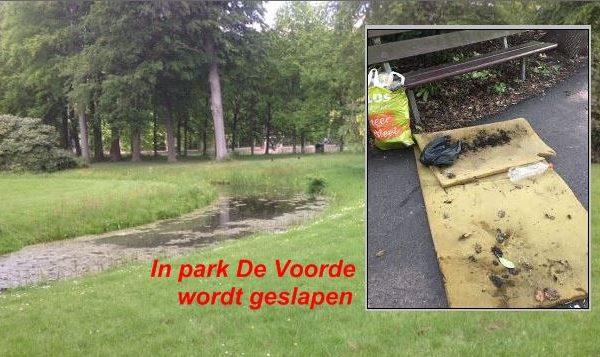 Wat doet Rijswijk met haar parkslapers