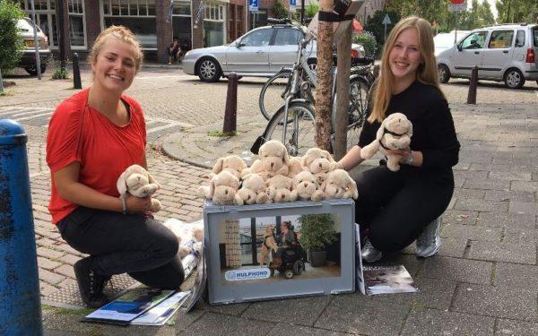 Rijswijkers kunnen vanmiddag Hulphond Nederland helpen