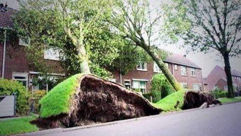 Storm en wateroverlast: wie bel je dan?
