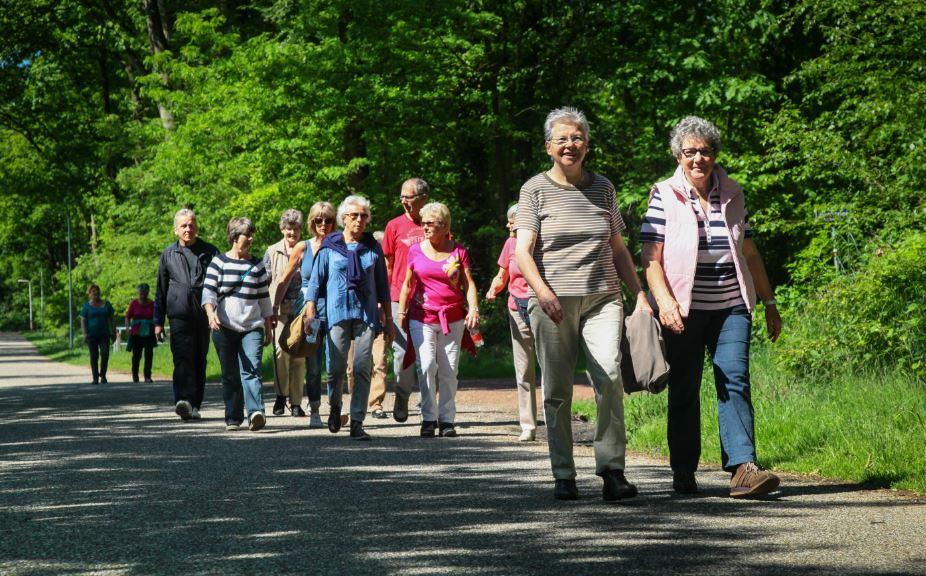wandelen ouderen - Rijswijk.TV
