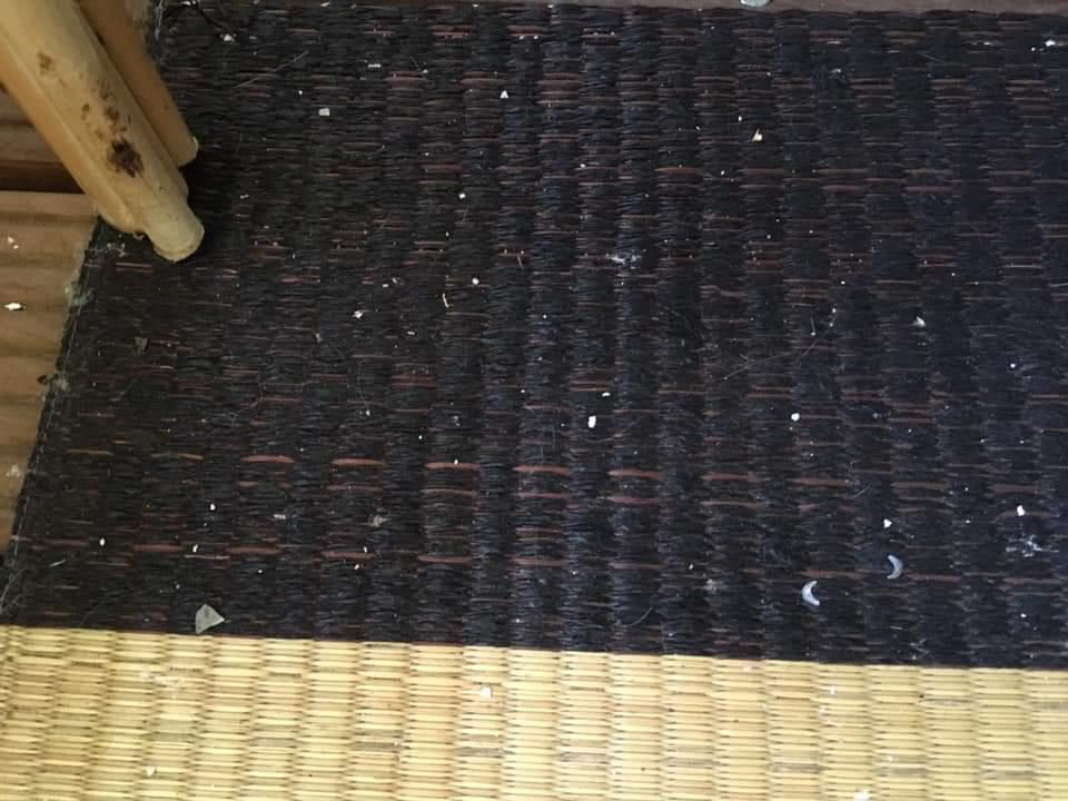 Delen asbest op tapijt